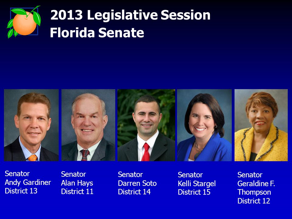 2013 Legislative Session Florida Senate Senator Andy Gardiner District 13 Senator Alan Hays District 11 Senator Darren Soto District 14 Senator Kelli Stargel District 15 Senator Geraldine F.