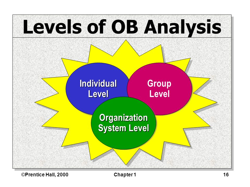 ©Prentice Hall, 2000Chapter 116 Levels of OB Analysis IndividualLevelIndividualLevel Group Level Group Level Organization System Level Organization