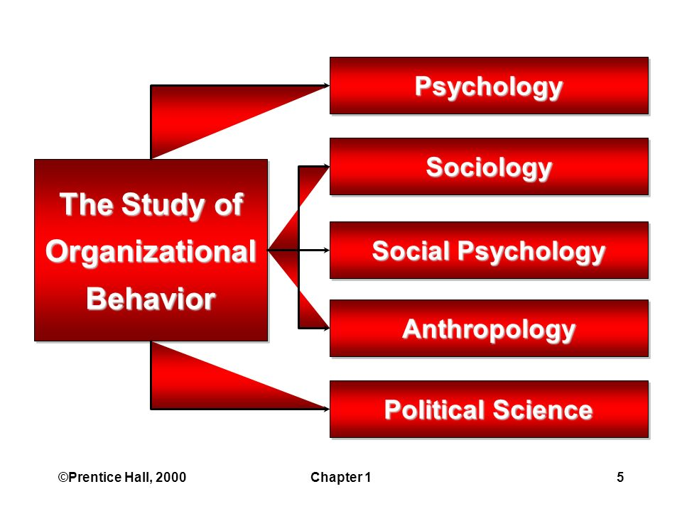 ©Prentice Hall, 2000Chapter 15 The Study of OrganizationalBehavior Psychology Sociology Social Psychology Anthropology Political Science