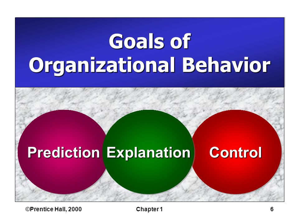 ©Prentice Hall, 2000Chapter 16 Goals of Organizational Behavior Goals of Organizational Behavior PredictionPredictionControlControlExplanationExplanation