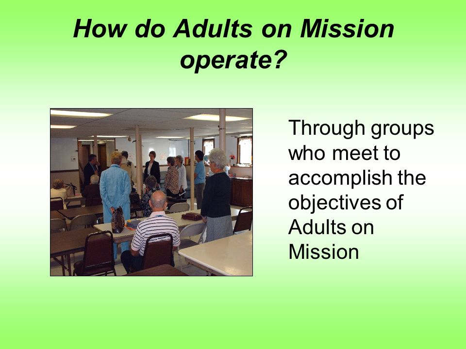 How do Adults on Mission operate.