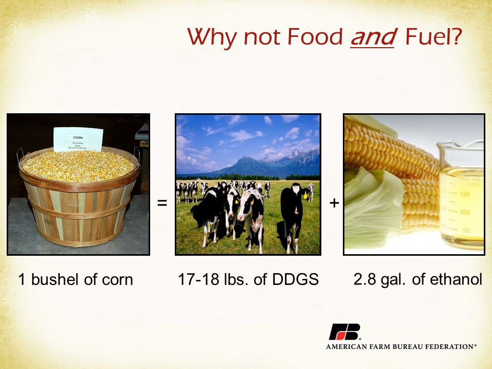 Why not Food and Fuel =+ 1 bushel of corn17-18 lbs. of DDGS 2.8 gal. of ethanol