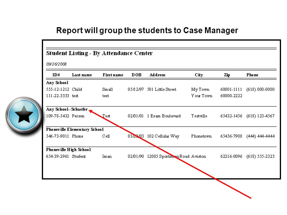 Report will group the students to Case Manager