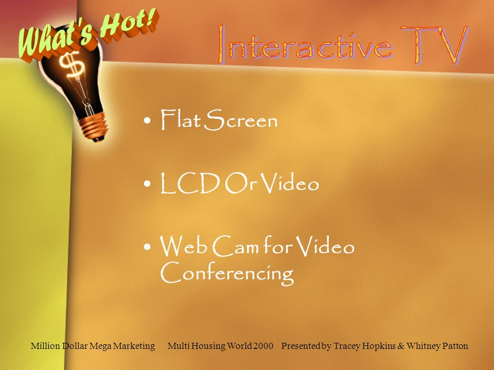 Flat Screen LCD Or Video Web Cam for Video Conferencing