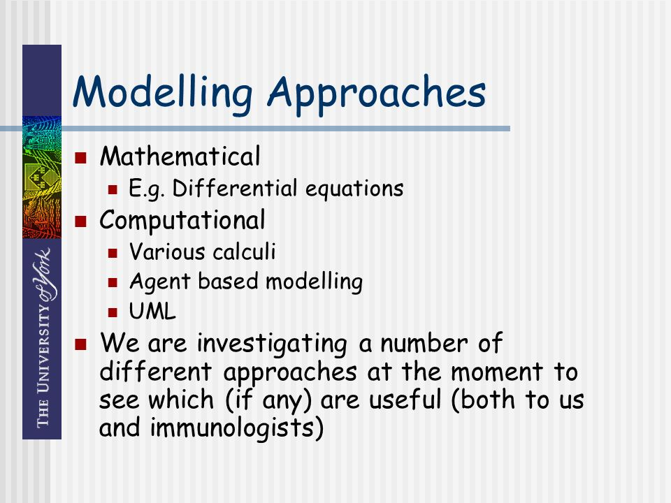Modelling Approaches Mathematical E.g.
