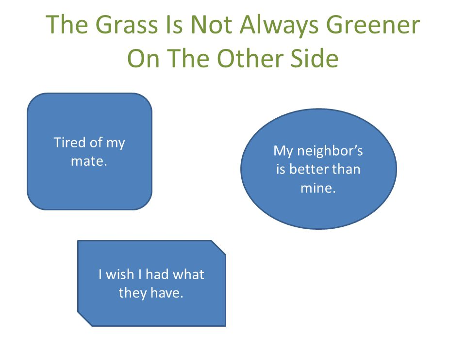 The Grass Is Not Always Greener On The Other Side Tired of my mate.