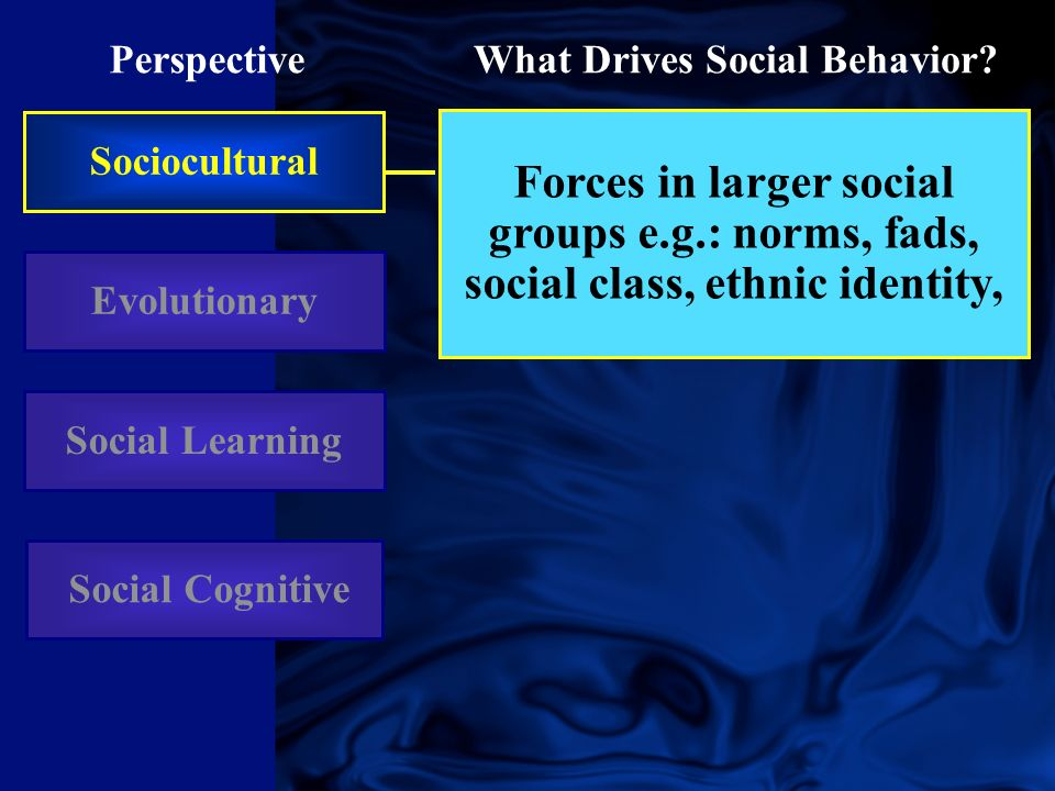 Sociocultural Perspective Evolutionary What Drives Social Behavior.
