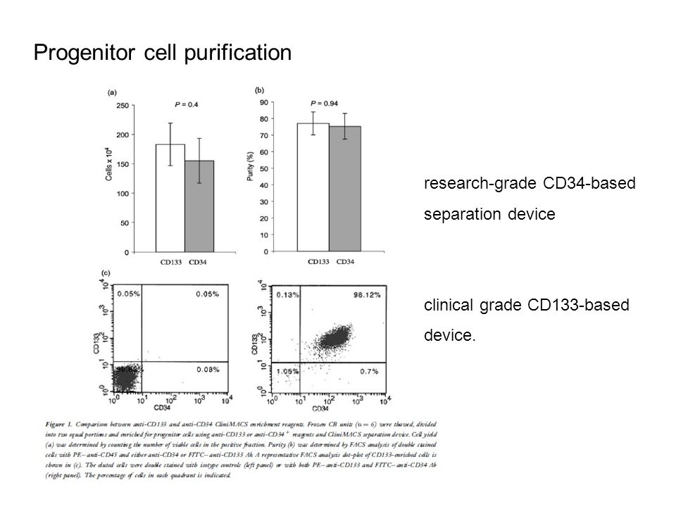 Progenitor cell purification research-grade CD34-based separation device clinical grade CD133-based device.