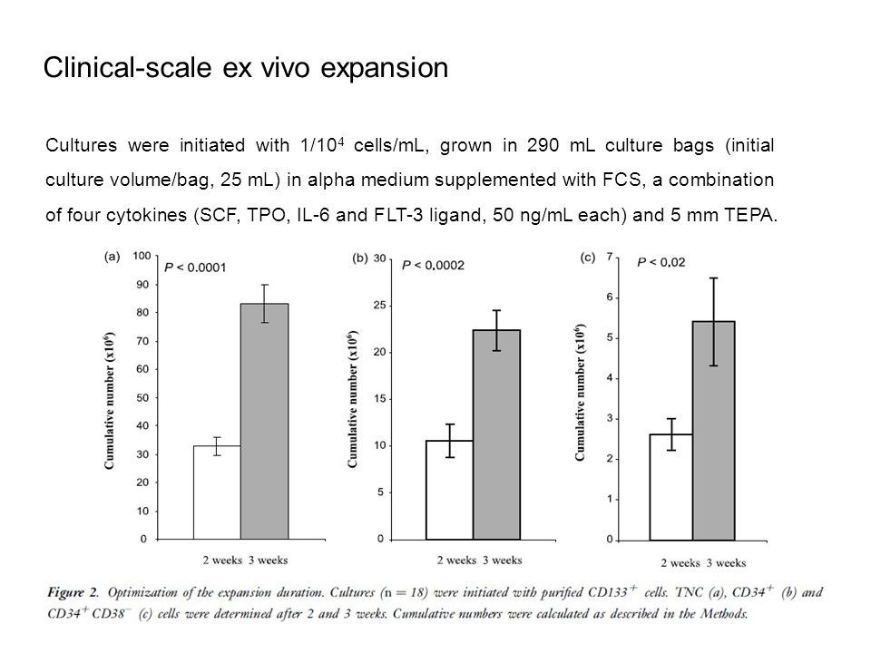 Clinical-scale ex vivo expansion Cultures were initiated with 1/10 4 cells/mL, grown in 290 mL culture bags (initial culture volume/bag, 25 mL) in alpha medium supplemented with FCS, a combination of four cytokines (SCF, TPO, IL-6 and FLT-3 ligand, 50 ng/mL each) and 5 mm TEPA.
