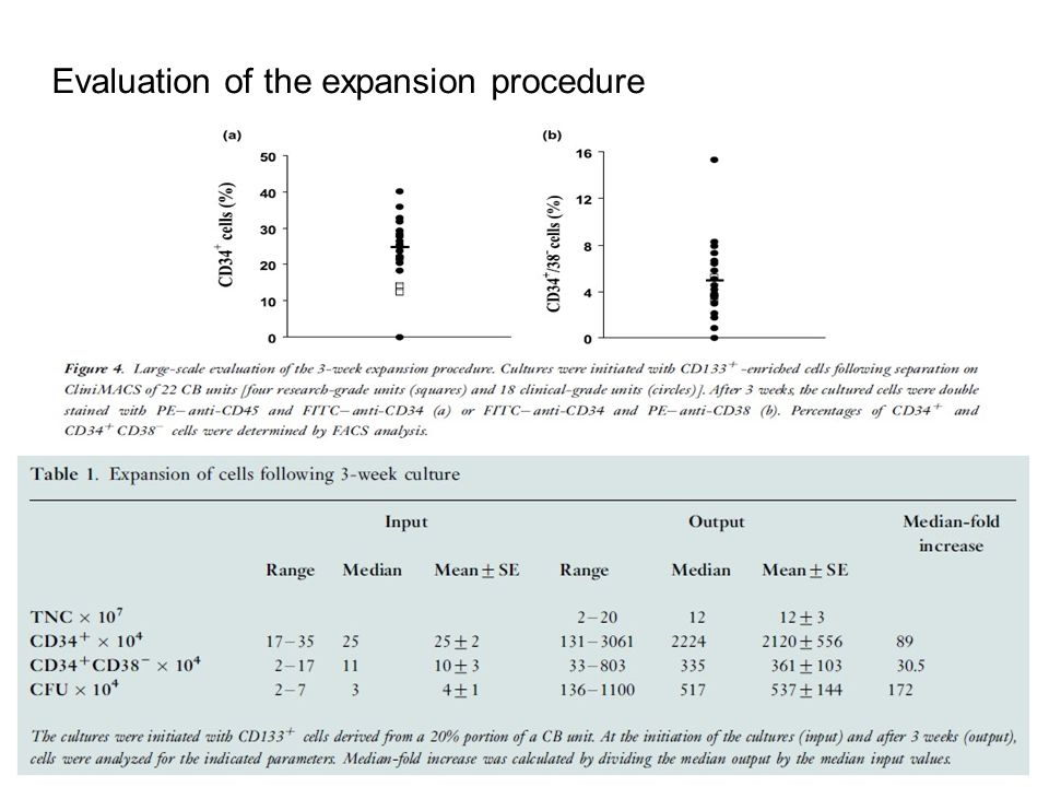 Evaluation of the expansion procedure