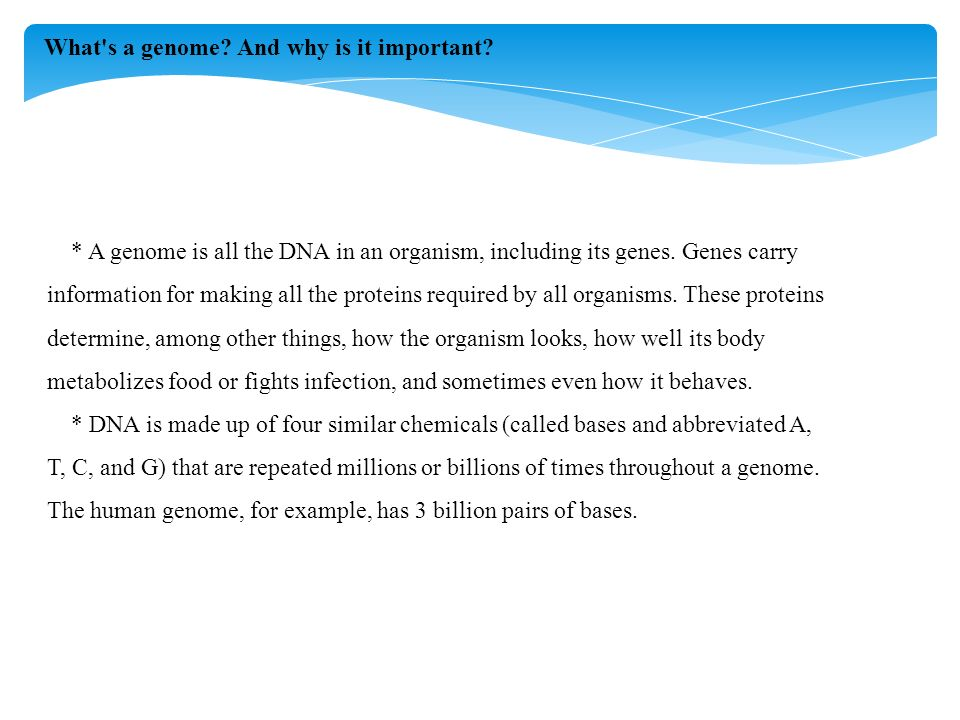 * A genome is all the DNA in an organism, including its genes.