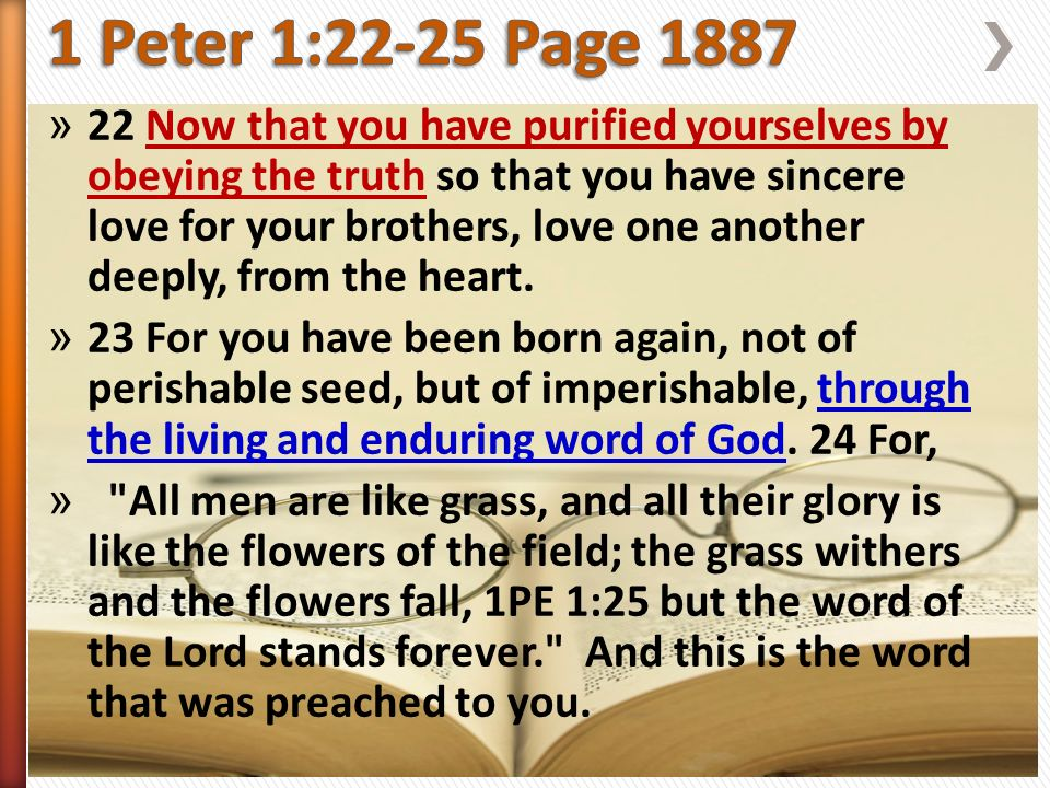 » 22 Now that you have purified yourselves by obeying the truth so that you have sincere love for your brothers, love one another deeply, from the heart.
