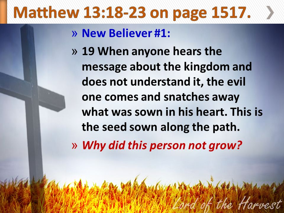 » New Believer #1: » 19 When anyone hears the message about the kingdom and does not understand it, the evil one comes and snatches away what was sown in his heart.