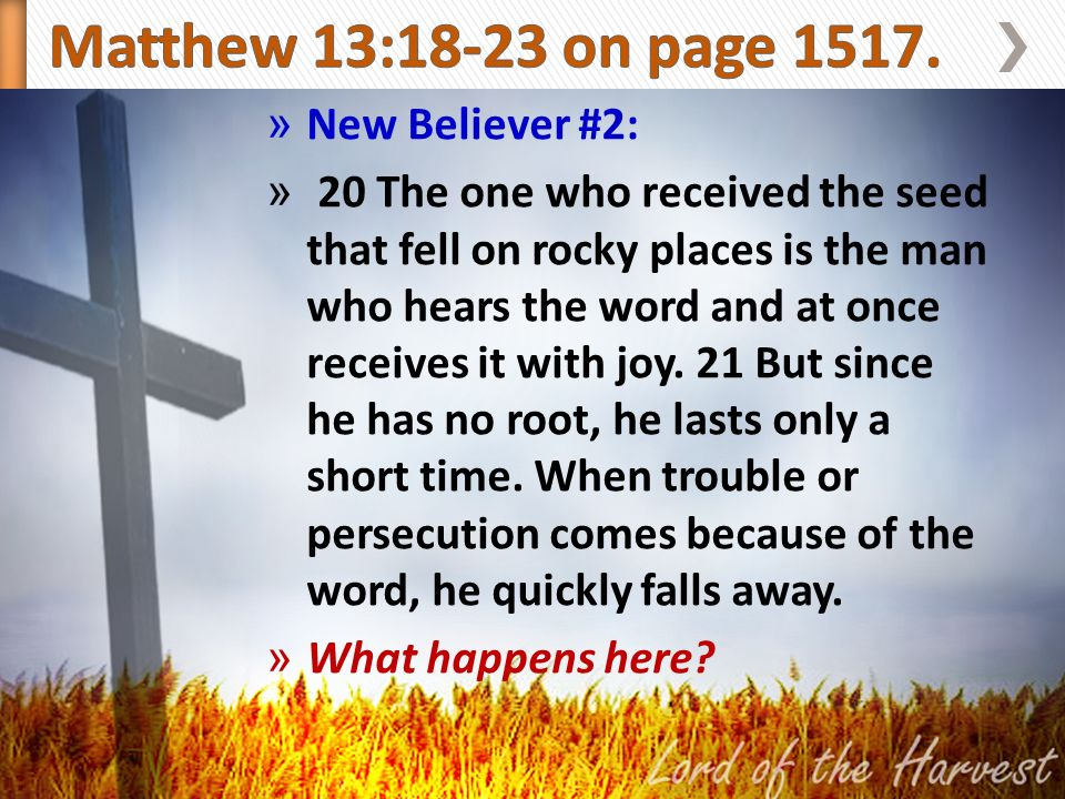 » New Believer #2: » 20 The one who received the seed that fell on rocky places is the man who hears the word and at once receives it with joy.