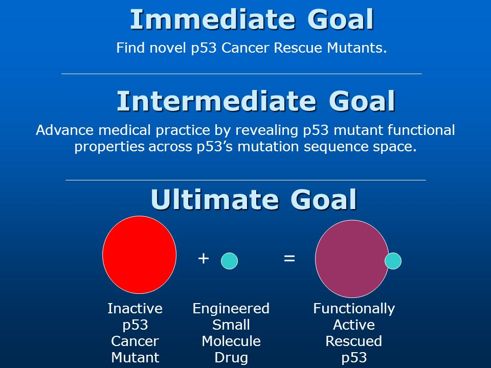 Ultimate Goal Inactive p53 Cancer Mutant Engineered Small Molecule Drug += Functionally Active Rescued p53 Advance medical practice by revealing p53 mutant functional properties across p53s mutation sequence space.
