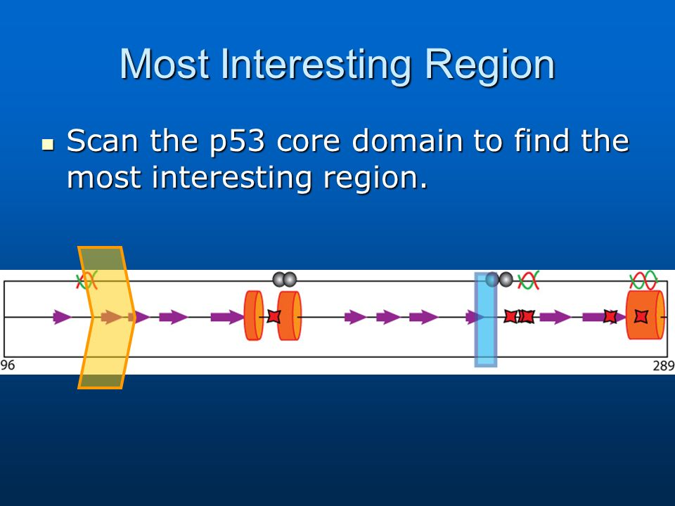 Most Interesting Region Scan the p53 core domain to find the most interesting region.