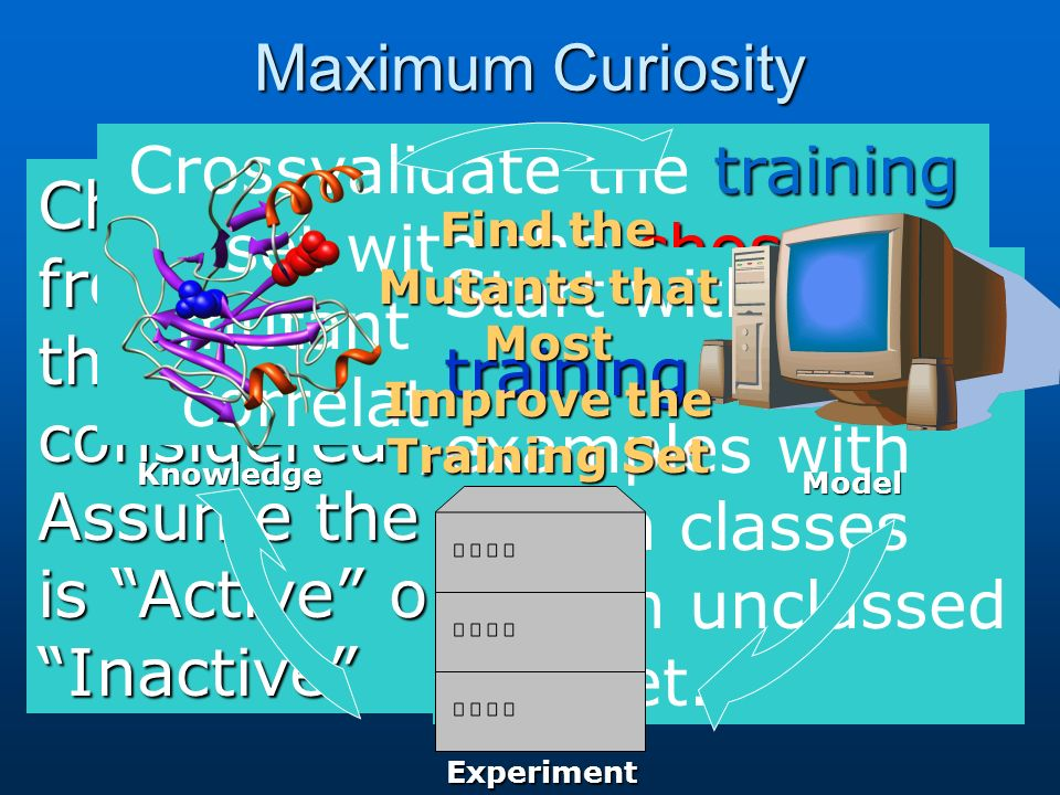 Maximum Curiosity Choose a mutant from the test set that has not been considered yet.