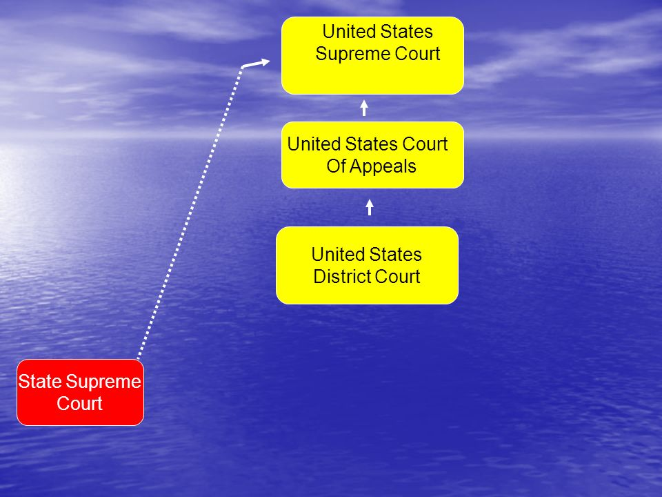 United States Court Of Appeals State Supreme Court United States District Court United States Supreme Court