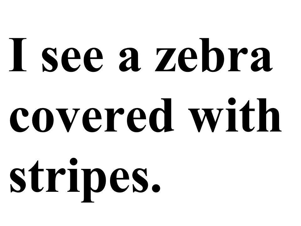 I see a zebra covered with stripes.