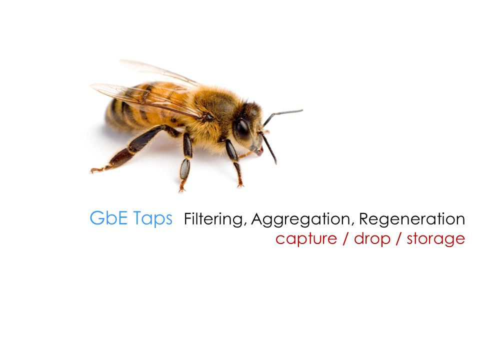 GbE Taps Filtering, Aggregation, Regeneration capture / drop / storage