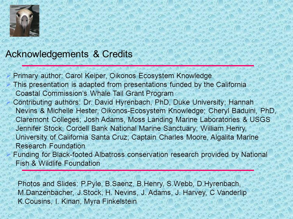 Acknowledgements & Credits Primary author: Carol Keiper, Oikonos Ecosystem Knowledge This presentation is adapted from presentations funded by the California Coastal Commissions Whale Tail Grant Program Contributing authors: Dr.
