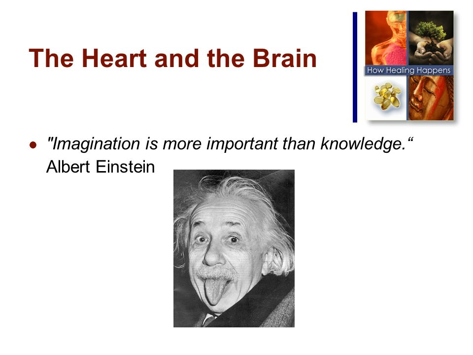 The Heart and the Brain Imagination is more important than knowledge. Albert Einstein