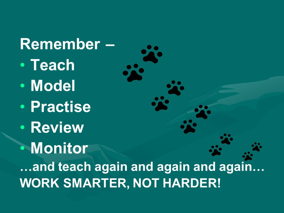 Remember – Teach Model Practise Review Monitor …and teach again and again and again… WORK SMARTER, NOT HARDER!