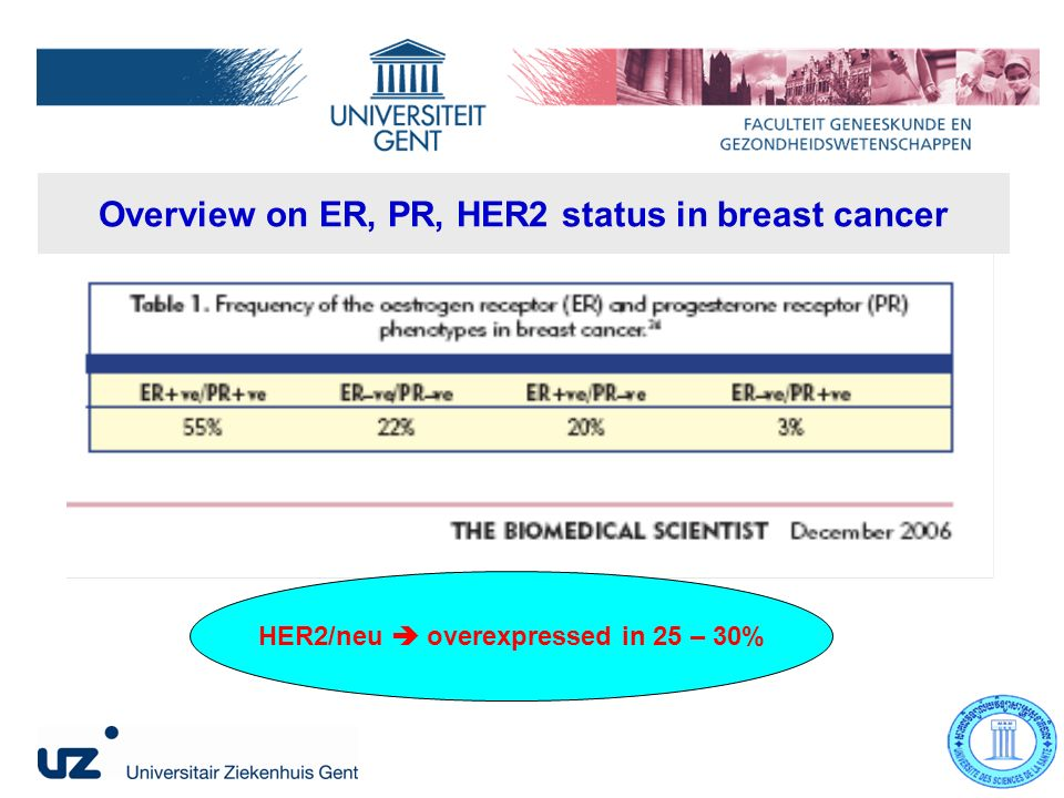 Overview on ER, PR, HER2 status in breast cancer HER2/neu overexpressed in 25 – 30%