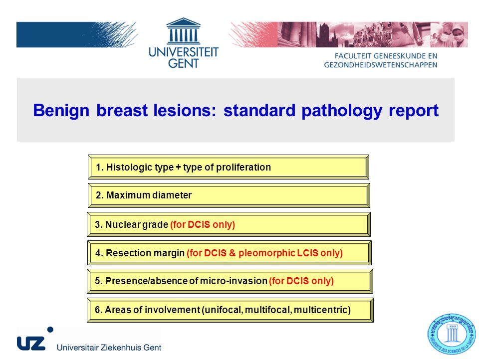 Benign breast lesions: standard pathology report 1.