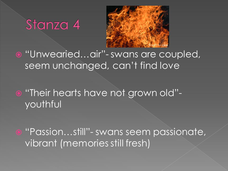 Unwearied…air- swans are coupled, seem unchanged, cant find love Their hearts have not grown old- youthful Passion…still- swans seem passionate, vibrant (memories still fresh)