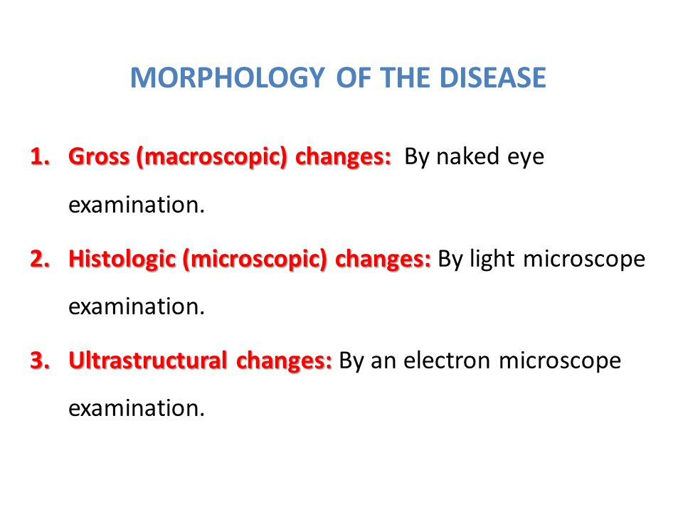 MORPHOLOGY OF THE DISEASE 1.Gross (macroscopic) changes: 1.Gross (macroscopic) changes: By naked eye examination.