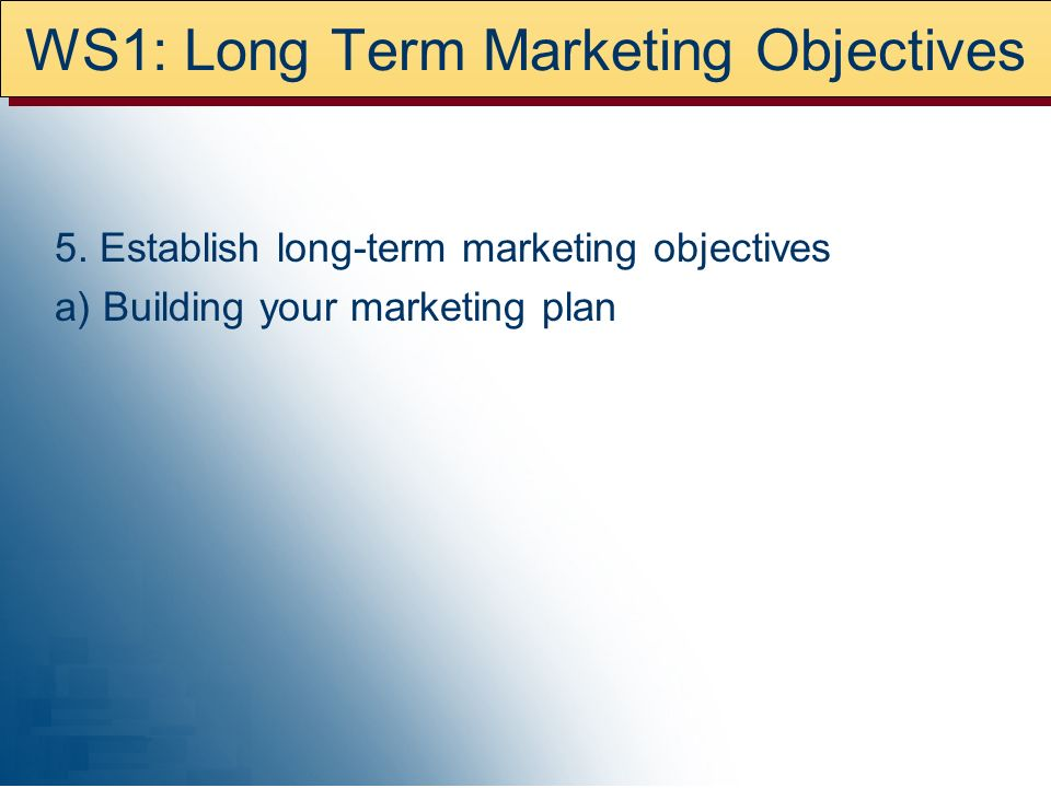 WS1: Long Term Marketing Objectives 5.
