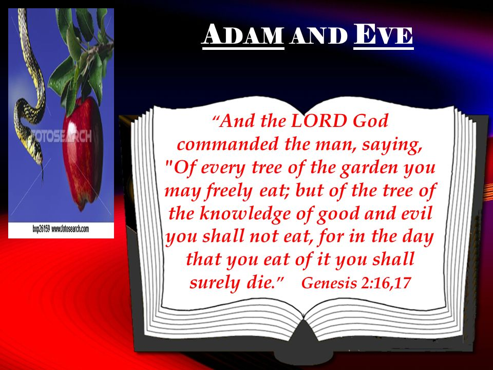 A DAM AND E VE And the LORD God commanded the man, saying, Of every tree of the garden you may freely eat; but of the tree of the knowledge of good and evil you shall not eat, for in the day that you eat of it you shall surely die.