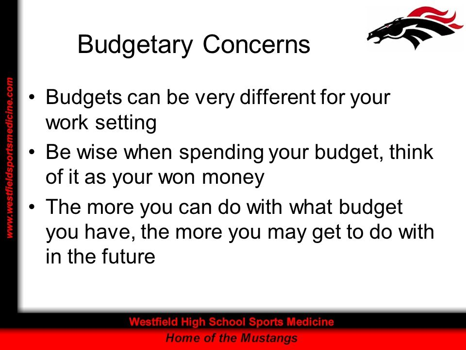 Budgetary Concerns Budgets can be very different for your work setting Be wise when spending your budget, think of it as your won money The more you can do with what budget you have, the more you may get to do with in the future