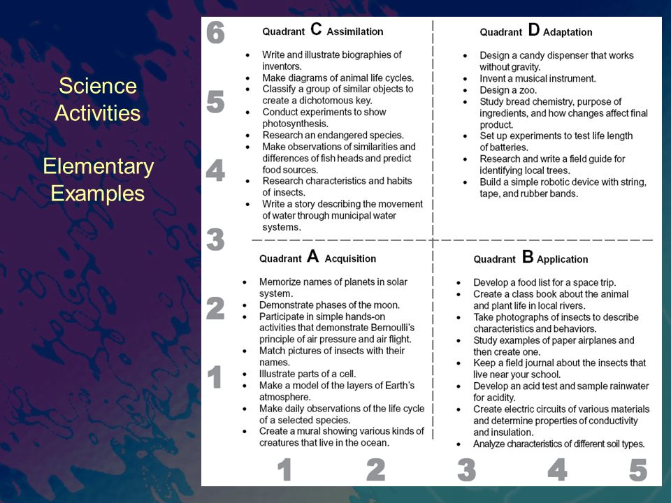 Science Activities Elementary Examples