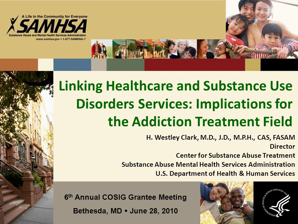 Linking Healthcare and Substance Use Disorders Services: Implications for the Addiction Treatment Field 6 th Annual COSIG Grantee Meeting Bethesda, MD June 28, 2010 H.
