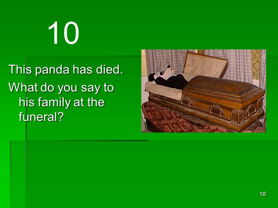 10 This panda has died. What do you say to his family at the funeral 10