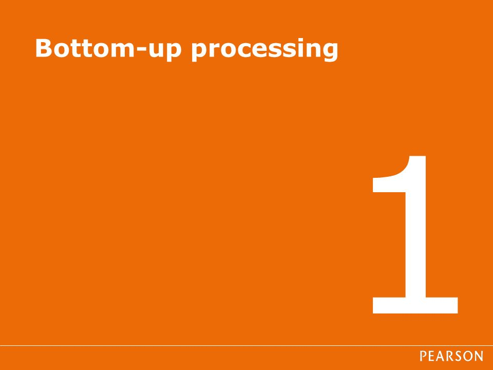 1 Bottom-up processing