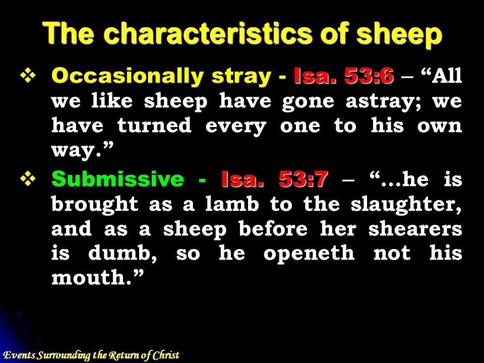 Events Surrounding the Return of Christ The characteristics of sheep Isa.