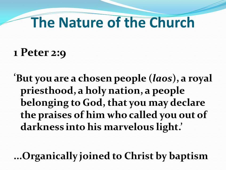 The Nature of the Church 1 Peter 2:9 But you are a chosen people (laos), a royal priesthood, a holy nation, a people belonging to God, that you may declare the praises of him who called you out of darkness into his marvelous light....Organically joined to Christ by baptism