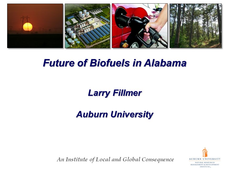 An Institute of Local and Global Consequence Future of Biofuels in Alabama Larry Fillmer Auburn University