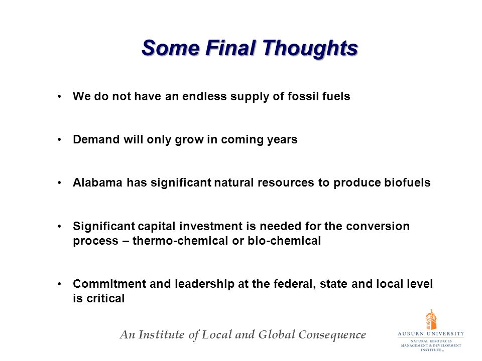 An Institute of Local and Global Consequence Some Final Thoughts We do not have an endless supply of fossil fuels Demand will only grow in coming years Alabama has significant natural resources to produce biofuels Significant capital investment is needed for the conversion process – thermo-chemical or bio-chemical Commitment and leadership at the federal, state and local level is critical