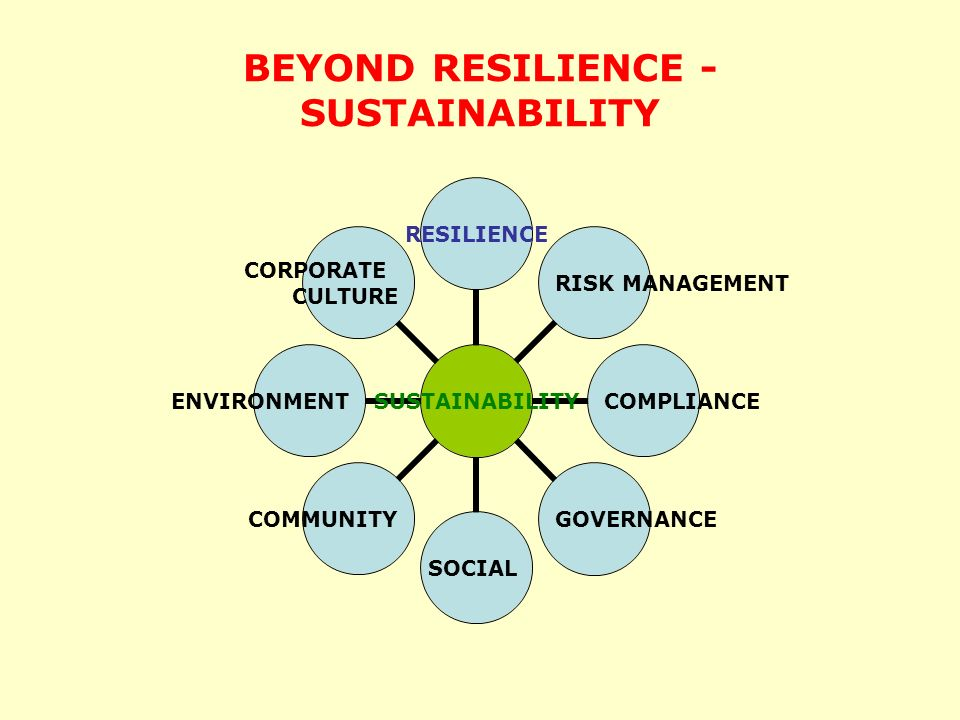 BEYOND RESILIENCE - SUSTAINABILITY SUSTAINABILITY RESILIENCE RISK MANAGEMENT COMPLIANCEGOVERNANCESOCIALCOMMUNITYENVIRONMENT CORPORATE CULTURE