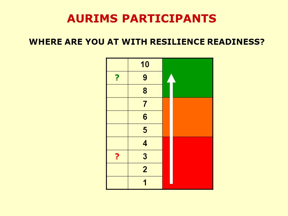 AURIMS PARTICIPANTS WHERE ARE YOU AT WITH RESILIENCE READINESS