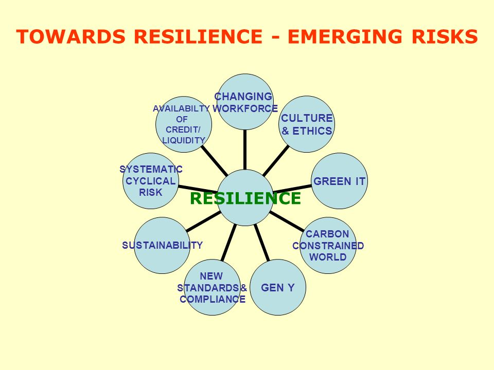 TOWARDS RESILIENCE - EMERGING RISKS RESILIENCE CHANGING WORKFORCE CULTURE & ETHICS GREEN IT CARBON CONSTRAINED WORLD GEN Y NEW STANDARDS & COMPLIANCE SUSTAINABILITY SYSTEMATIC CYCLICAL RISK AVAILABILTY OF CREDIT/ LIQUIDITY