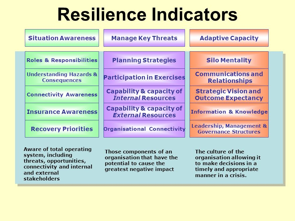 Resilience Indicators Situation AwarenessManage Key ThreatsAdaptive Capacity Roles & Responsibilities Understanding Hazards & Consequences Connectivity Awareness Insurance Awareness Recovery Priorities Planning Strategies Participation in Exercises Capability & capacity of Internal Resources Capability & capacity of External Resources Organisational Connectivity Silo Mentality Communications and Relationships Strategic Vision and Outcome Expectancy Information & Knowledge Leadership, Management & Governance Structures Aware of total operating system, including threats, opportunities, connectivity and internal and external stakeholders Those components of an organisation that have the potential to cause the greatest negative impact The culture of the organisation allowing it to make decisions in a timely and appropriate manner in a crisis.