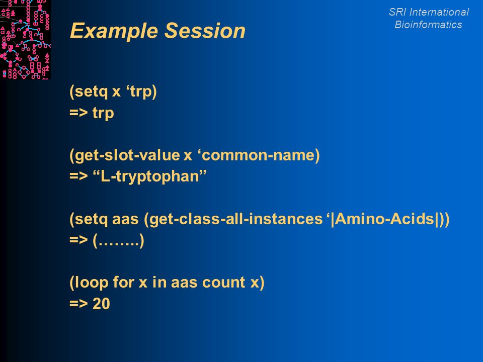 SRI International Bioinformatics Example Session (setq x trp) => trp (get-slot-value x common-name) => L-tryptophan (setq aas (get-class-all-instances |Amino-Acids|)) => (……..) (loop for x in aas count x) => 20