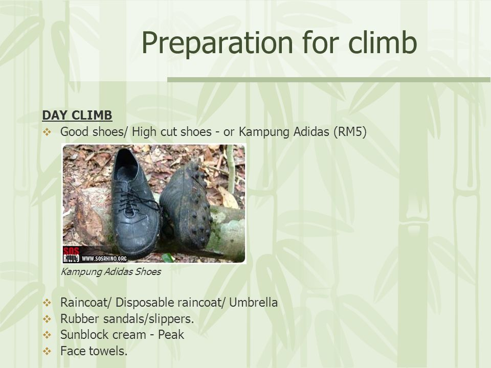 Preparation for climb DAY CLIMB Good shoes/ High cut shoes - or Kampung Adidas (RM5) Kampung Adidas Shoes Raincoat/ Disposable raincoat/ Umbrella Rubber sandals/slippers.