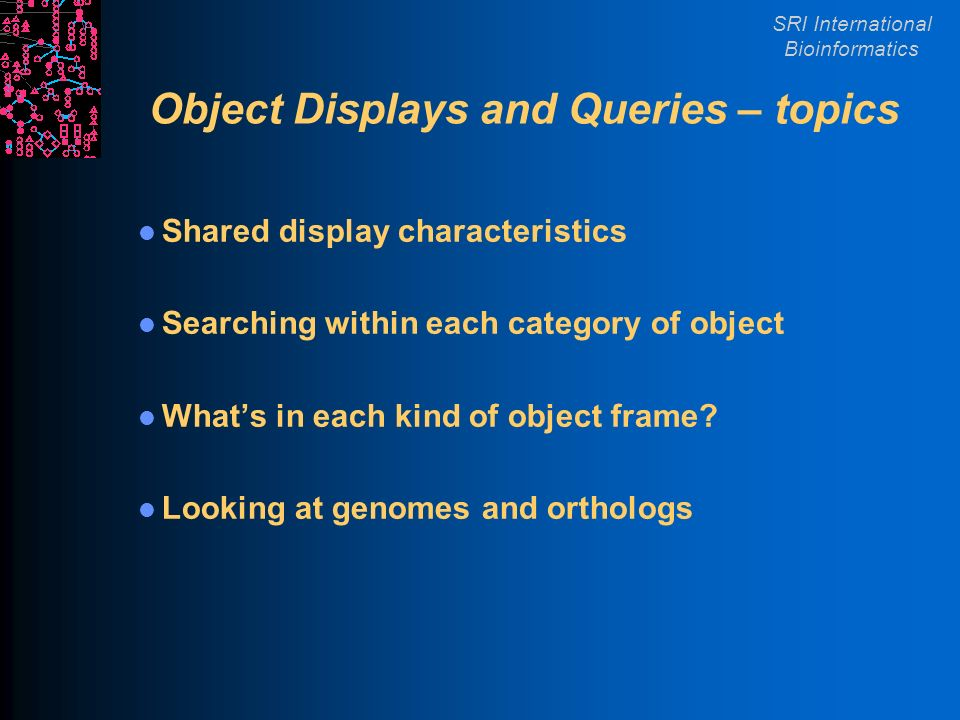 SRI International Bioinformatics Object Displays and Queries – topics Shared display characteristics Searching within each category of object Whats in each kind of object frame.