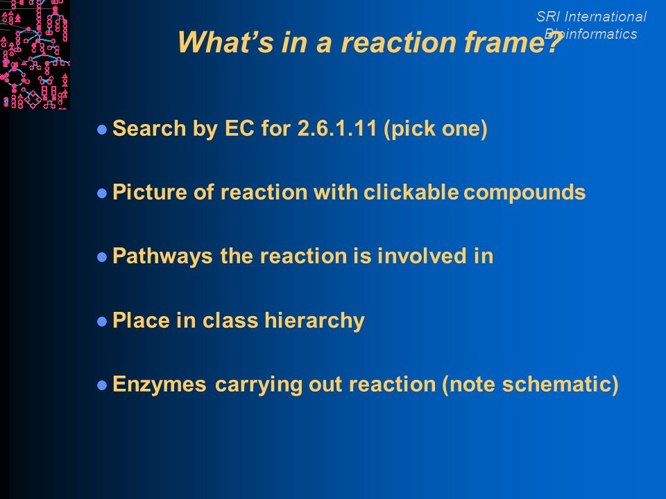 SRI International Bioinformatics Whats in a reaction frame.